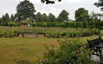 kralska gradina кралска градина